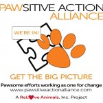 pawsitive action alliance logo
