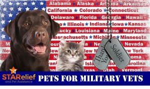 Pets For Military Vets
