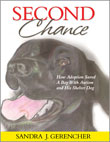 book_second_chance