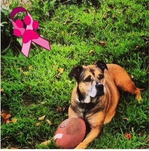Ayla's pink photo