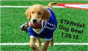 STARelief Dog Bowl