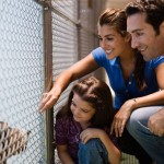 dog-shelter-adoption-family_shelter-pet360